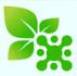 Создание сайта-каталога торговой компании